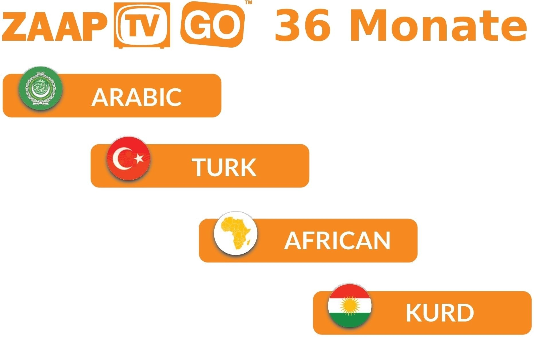 ZaapTV HD609N STB IPTV Receiver incl. 3 years ZAAPTV GO (arabisch/türkisch)